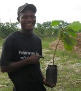 tree planting day
